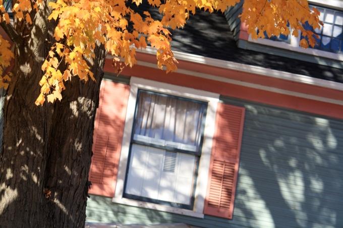 windowwink