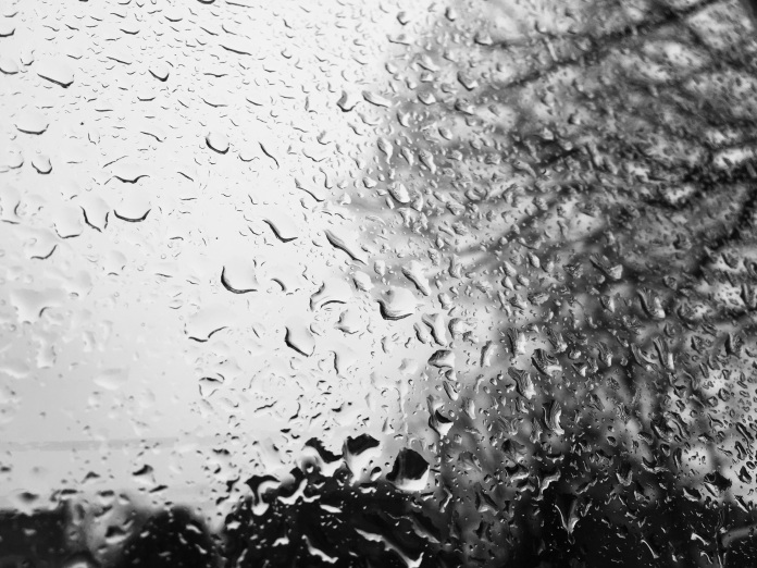 a rain-spattered window, with bare tree limbs beyond, rendered in black and white